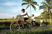 Guided Village Bicycle tour