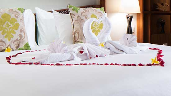 Love Swan with flower on your bed